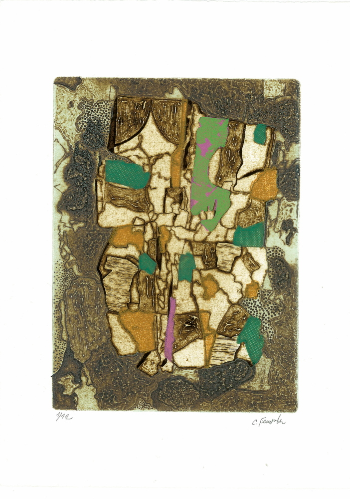 Barena-n°3-2009-incisione-su-cartone-collagraph-matrice-mm.240x180