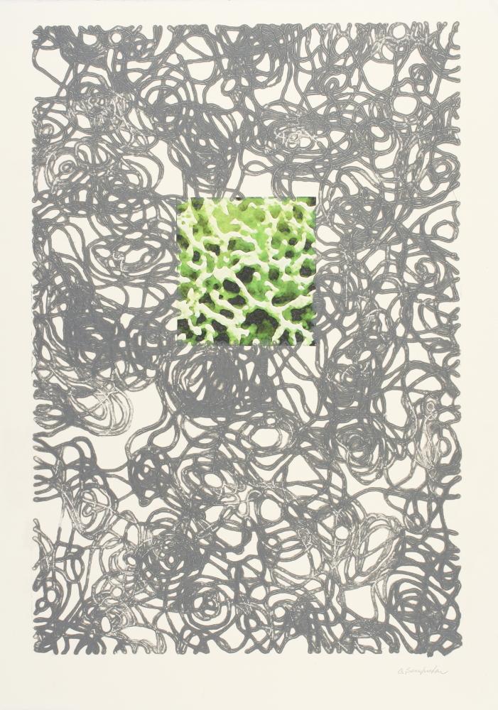 Entropia-V-2013-puntasecca-su-plexiglas-stampa-digitale-mm.445x305-foglio-mm.500x350