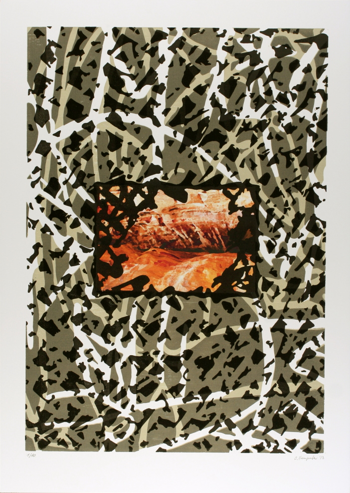Entropia-XI-2013-xilografia-stampa-digitale-matrice-mm.600x425-foglio-mm.700x500