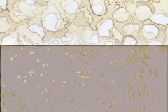 Ciò che resta del fuoco 3 - collage acrilico cera su tela - dittico cm 130x80 - 2017
